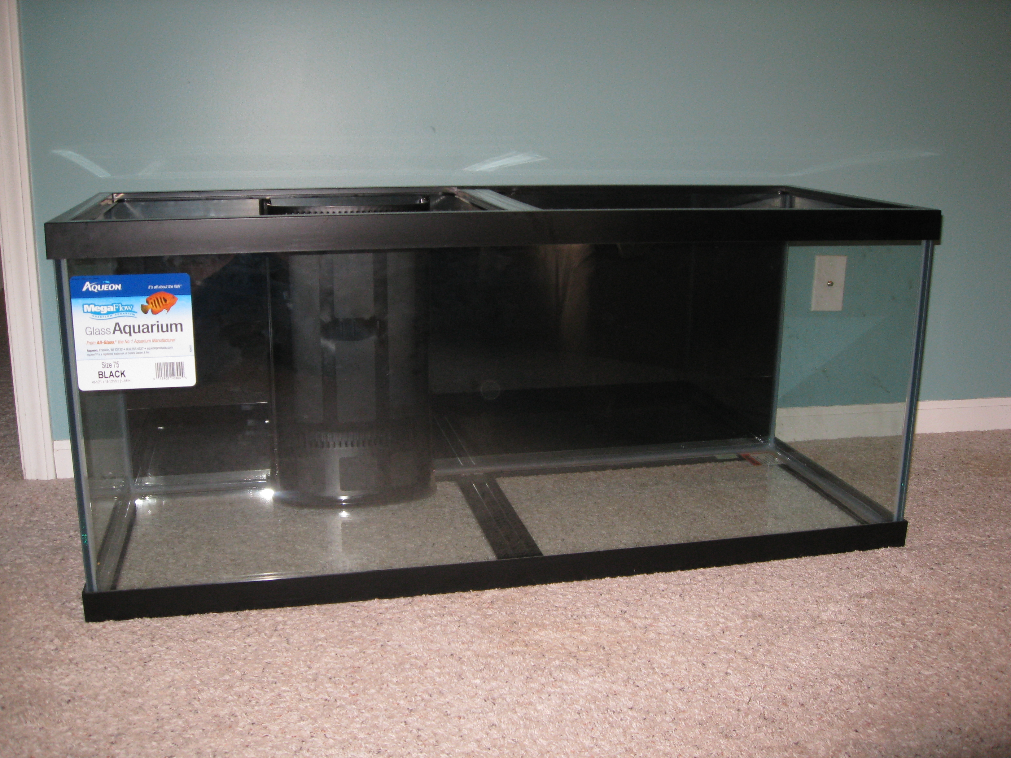 75 gallon aquarium with overflowsandbaraquatics for 75 gallon fish tank dimensions